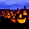 ext_10489: Jack-o-lanterns (Lady Dedlock)