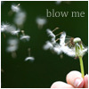 "celli: a dandelion being blown into the air, captioned ""blow me"" (blow me)"