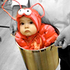 domarzione: (lobsterbaby)