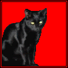 redblack: An angry black cat sitting at the left side of a red background. (Phage)
