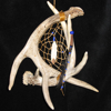 dreamjournal: A dreamcatcher framed with antlers. (benton fraser's dreamcatcher)