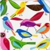 birdskirt: (birdy)