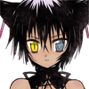 cattack: (No.)