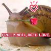 green_dreams: (snail love)