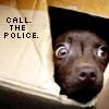 green_dreams: (call. the. police)