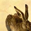 green_dreams: (serious bunny)
