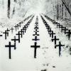 green_dreams: (cold rows of crosses)