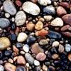 wild_dreamer: (pebbles)