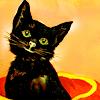 aerianya: (black kitty)