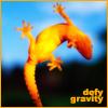 hopefulnebula: An orange lizard walking on glass. Text: Defy Gravity (Defy Gravity)