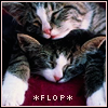hopefulnebula: Kittens flopping on each other to nap (Flop)