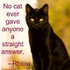 ilyena_sylph: img of black cat with quote (Rhiow: answer)