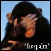 dizmo: A chimp facepalming. (misc: facepalm)