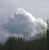 raingirl: (cloud)