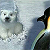 healingmirth: polar bear cub and penguin from Coca-Cola ad (bear)