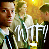 ghostyouknow: (French Mistake Misha - WTF?)