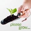 "pinepigs_garden: trowel with dirt and a small plant with the words ""Please grow"" (Please grow)"