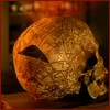 highlander_ii: old skull with mystical writings on it and glowing motes filtering into a hole in the back ([Dresden-TV] Bob getting back in his sku)