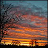 sporky_rat: A setting sun cloudscape, gradiating from yellow to orange to pink to blue to dark blue (oh delight)