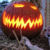 bluehwys: (Halloween)