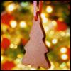 teylaminh: (Christmas - cookie)