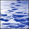 teylaminh: (Christmas - snow)