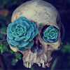 teigh_corvus: ([Misc.] [Plants] Plant Eyed Skull)