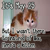 "yubsie: Picture of a kitten. Text reads ""It's May 25th. But I wasnt there. So instead of a lilac, here's a kitten!"" (May 25th)"