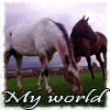 spirithorse21: (My World)