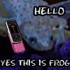 birdiebot: (Yes this is frog) (Default)