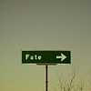 elaran: signpost of fate (confused!dinozzo)