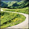 wordweaverlynn: (green road)
