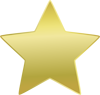 gold_star: A gold five-pointed star on a white background (gold star)