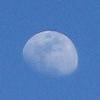 ladychapel: Blue Moon (Dreamwidth) (Default)
