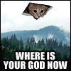 mithriltabby: (Ceiling Cat)