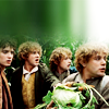 dreamflower: (four hobbits by slightly tookish)