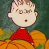 haruka: (zz - peanuts-linus eyes)