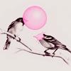 enemybirds: (stock)