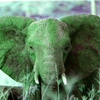a1enzo: a greenish elephant (Cubefall '12)