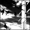 ensoot: (Four and twenty blackbirds)