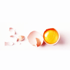 dar_jeeling: (misc Egg S)