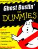nugatorytm: Ray and Egon's latest book (Dummies)