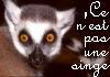 quasilemur: (lemur magritte)