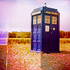 the_flowergirl: (Tardis)