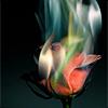 mesmiranda: (flames)