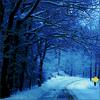 nyks59: (Winter)