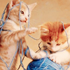 catness: (playful)
