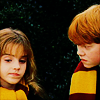 sexlexia: (ron and hermione)
