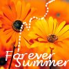 moonlight_mist: (Forever Summer)