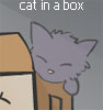 red_pill: (cat in a box)